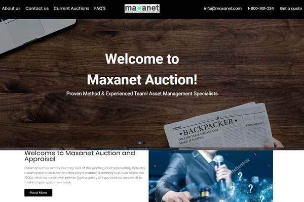 Maxanet website template 2